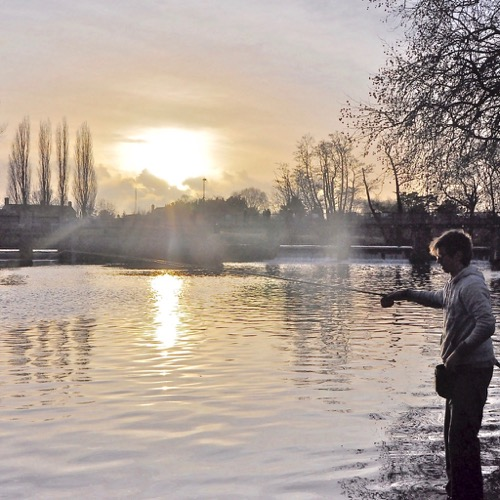 how to catch fish in winter carp coarse