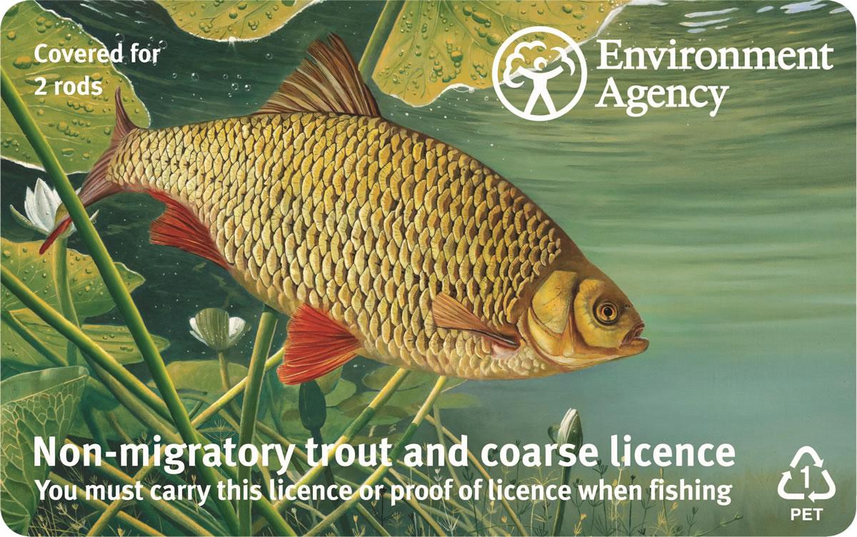 Get Fishing | Trout & Coarse 2 Rod English-1200-2